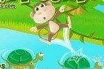 Schilkröten Springen